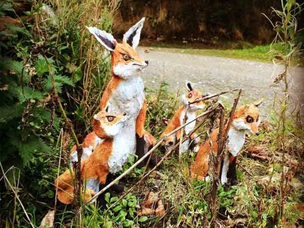 fox-pic-for-website